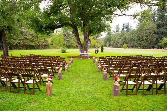 Wedding venue ideas on a budget